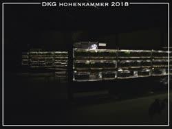01-0-Copr_2018-Steffen_Fickt.jpg