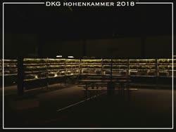 03-0-Copr_2018-Steffen_Fickt.jpg