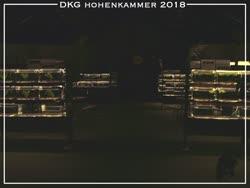 05-0-Copr_2018-Steffen_Fickt.jpg