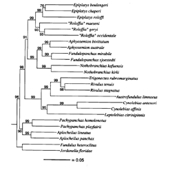 phylotree_97t.png